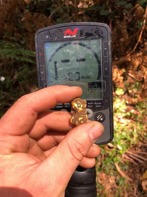 pépite d'or trouvé en australie trouvé avec un equinox