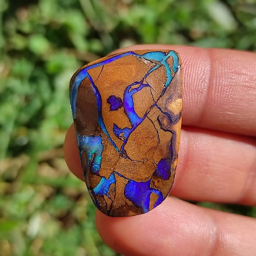 opale boulder trouvé par un prospecteur en australie