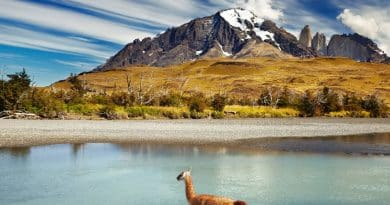 patagonie entre mer et montagne